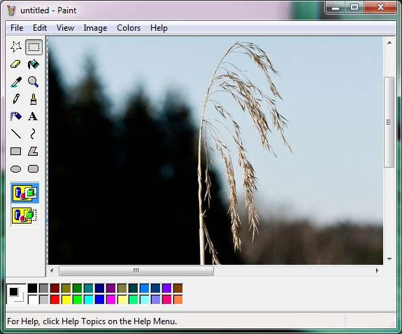 Photo editing free download for windows 7.